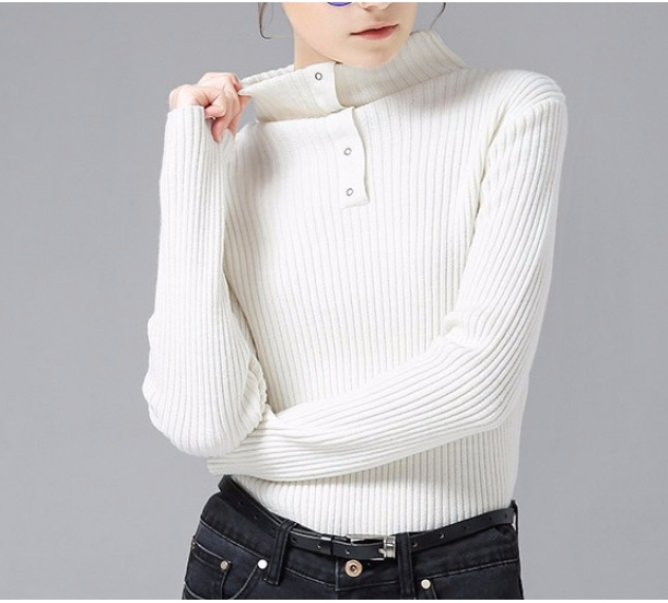 women's sweater , slim fit high necked style